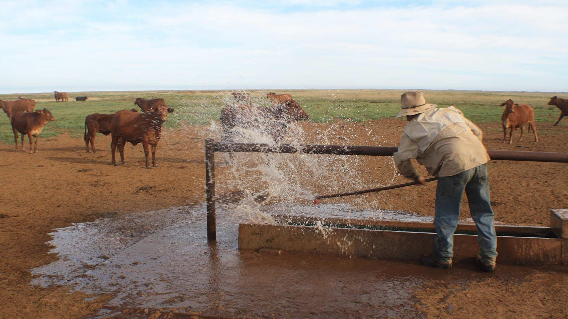 A farmer splashes water from a trough filled by solar-powered Sun Sub pumps