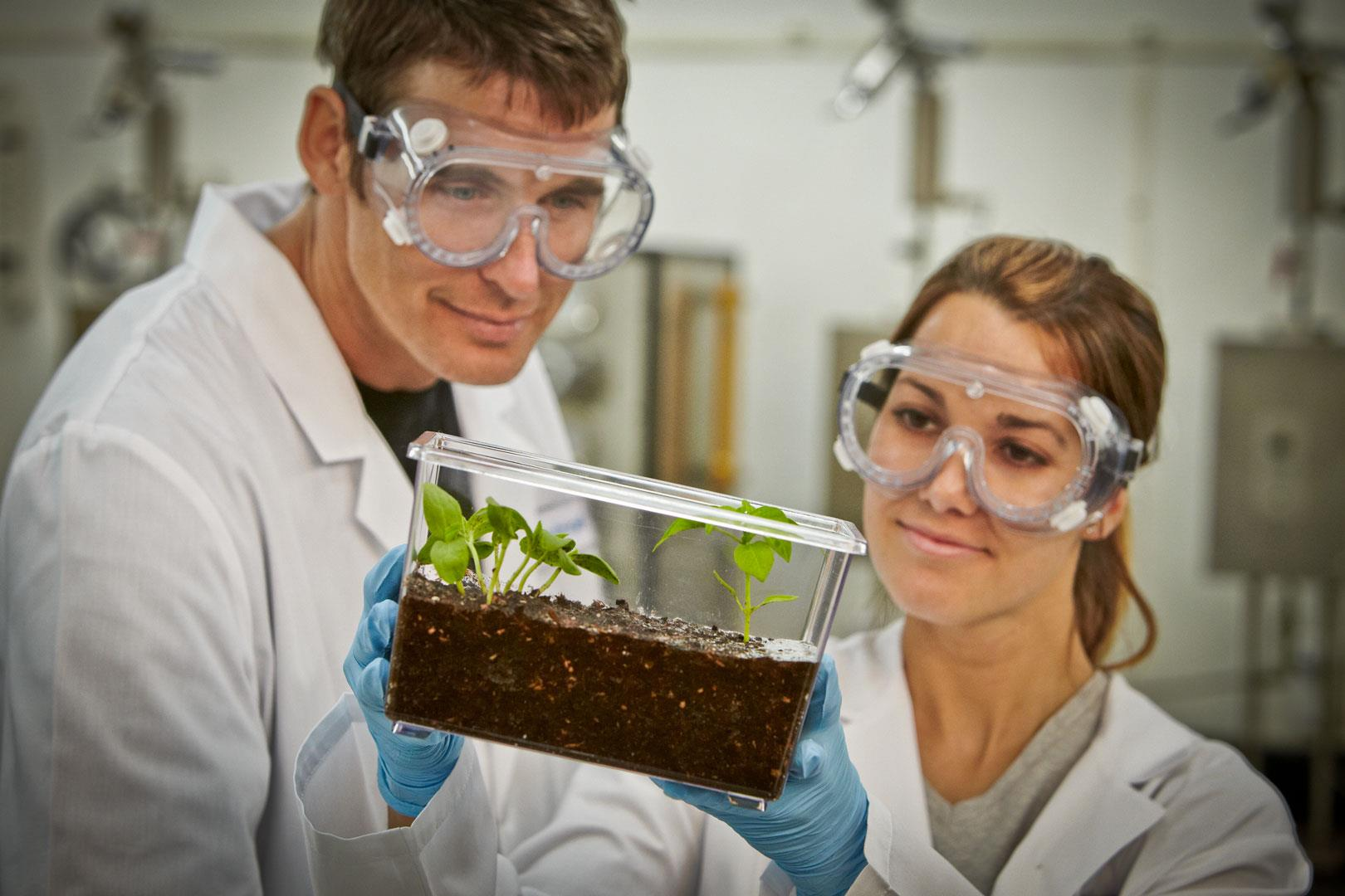 BlueFusion Scientists Observing Soil