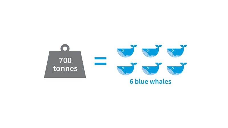 A graphic image comparing a seven hundred tonne weight to six blue whales