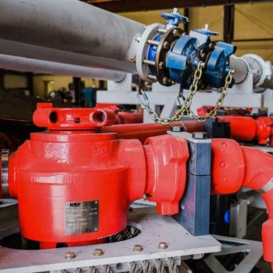 Rolligon plug valves