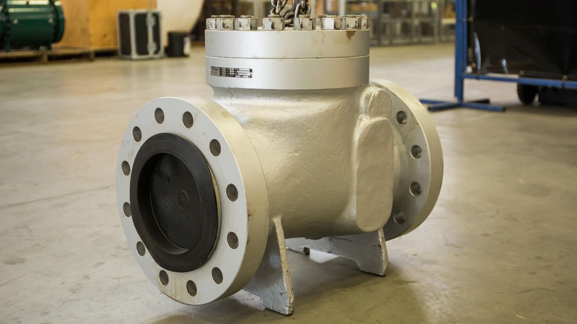 Model of a Swing Check Valve